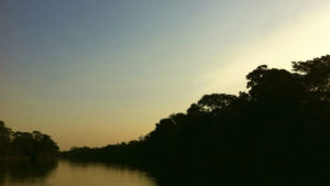 rio guayabero