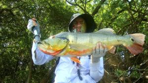 pesca deportiva rió bita
