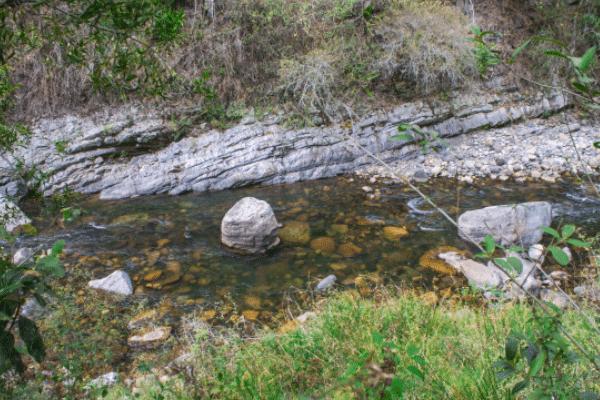 paisajes silvestres