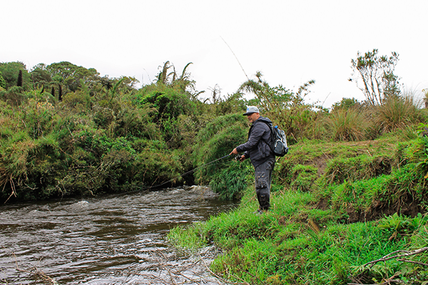 pesca de trucha cundinamarca