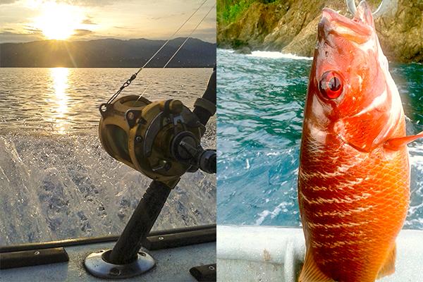 pesca bahia solano