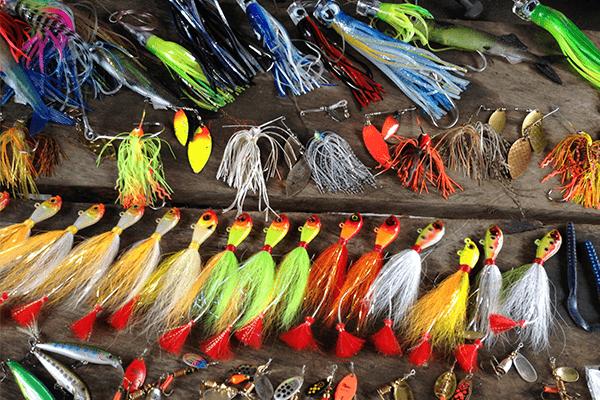 curso pesca deportiva